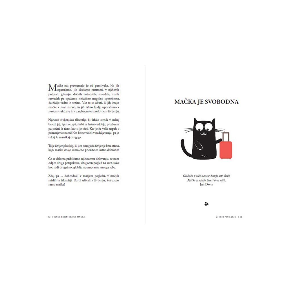 Založba Vida Knjiga Živeti po mačje
