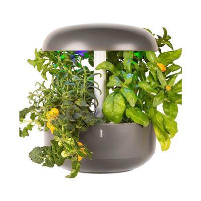 Plantui Pametni vrt 6 Smart Garden, kapsule s semeni mete in Genoveser bazilika