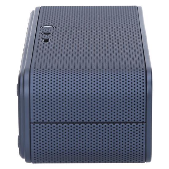 Samsung Bluetooth zvočnik Level BOX mini(EO-SG900DBEGWW)