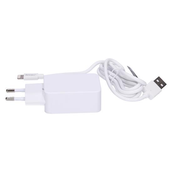 Fontastic Hitri polnilec in podatkovni kabel 220V